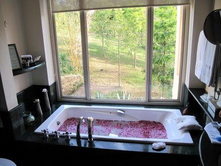 バラの花がいっぱい。外の見えるお風呂も素敵だ。 外からは誰も見えない。ご心配無く。