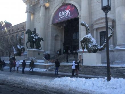 恐竜の植木にも雪が積もって、ちょっと可愛い