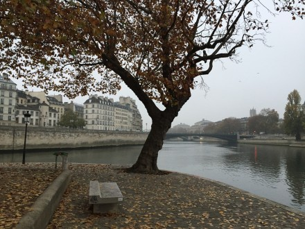 パリの朝の瞑想。 テロが起きる一週間ほど前でした。